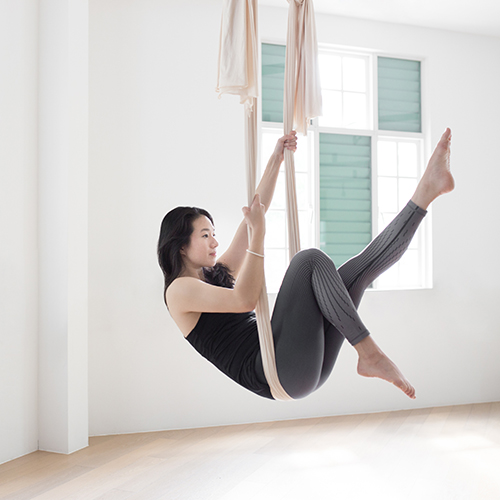 Upside Motion Absolute Abdominals